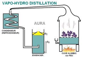 vapo-hydro distillation